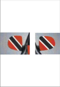 images/Trinidad and Tobago image car mirror flag.jpg